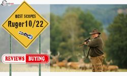Best scope for Ruger 10/22 Reviews