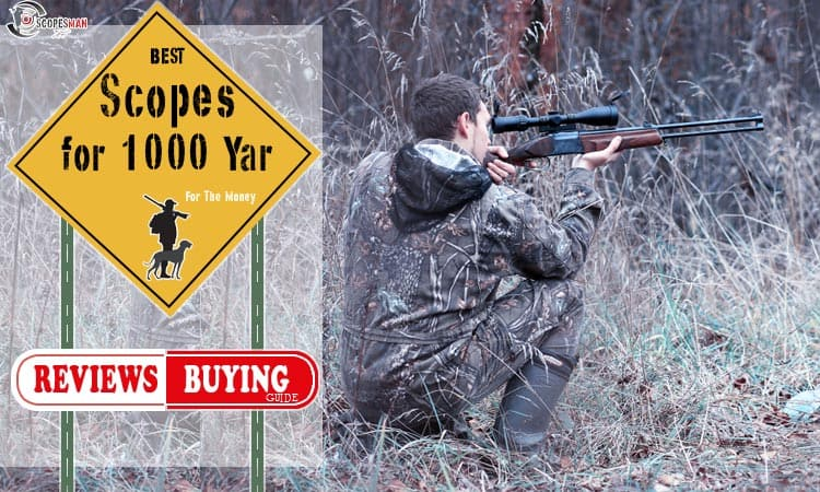 Best Scopes for 1000 Yard Shooting For The Money - Scopes Man