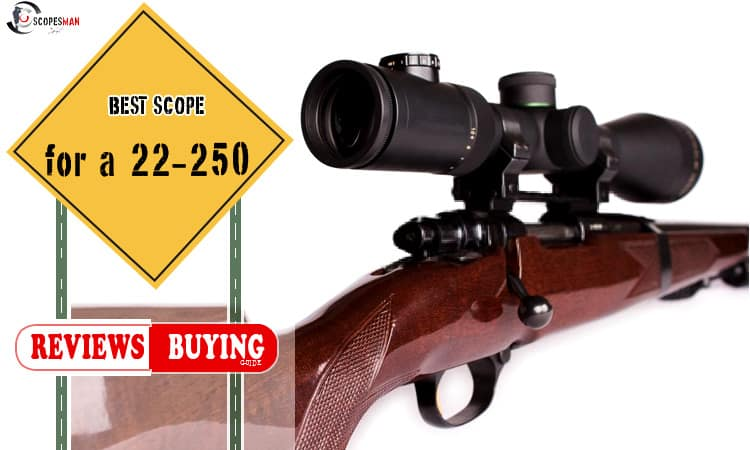 Best Scope for a 22-250 Review 2019