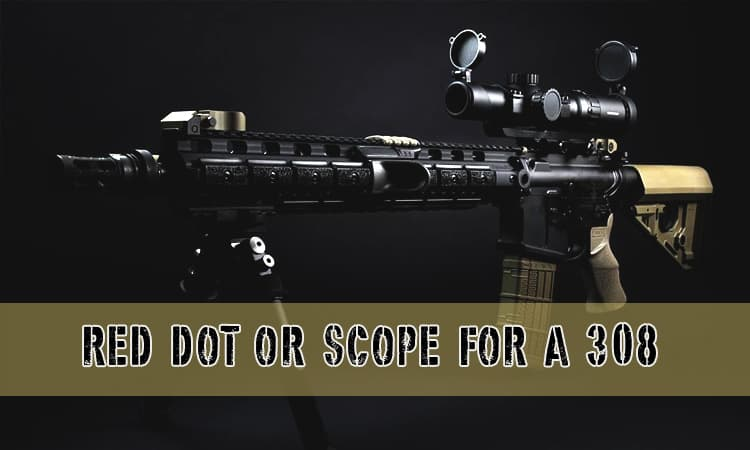 Red Dot or Scope for a 308